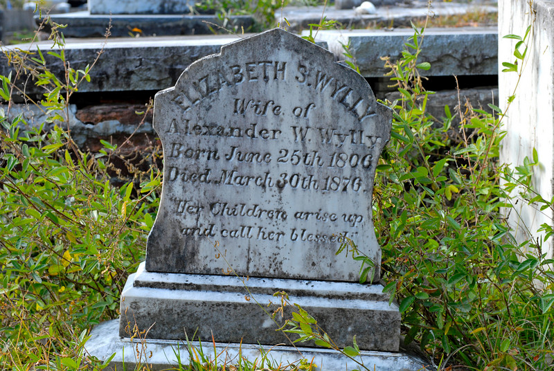 Wylly - Elizabeth S. Wylly  b.1800 d.1870