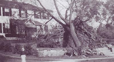 rich holmes 1938 hurricane