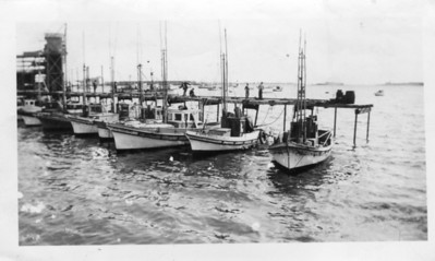 Tuna boats sitting in the San Diego Bay.  Courtesy of the Magueri Family.
