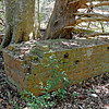 Hofwyl Plantation - Brick Structure (well?) near Tabby Ruins