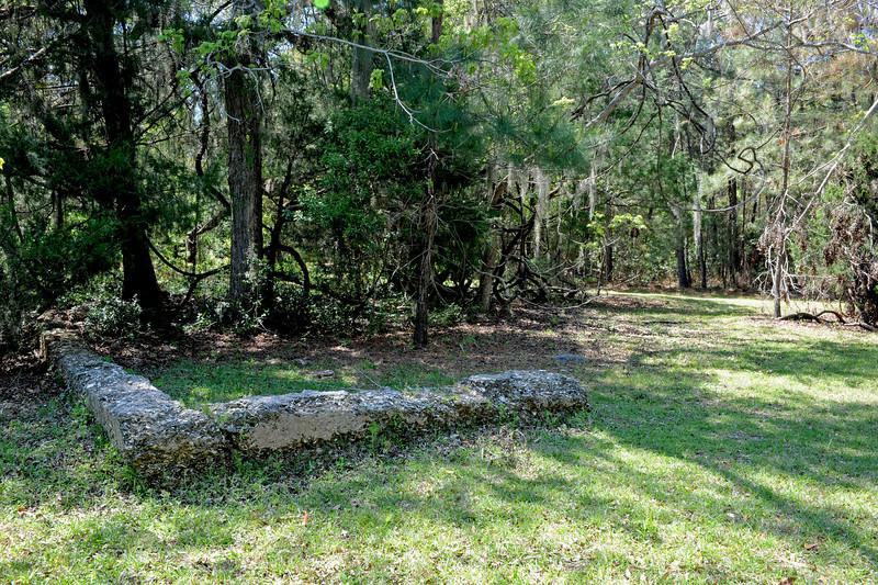Hofwyl Plantation - Tabby Ruins near Rice Fields