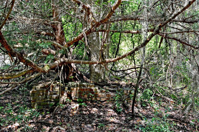 Hofwyl Plantation - Brick Structure (well?) near Tabby Ruins