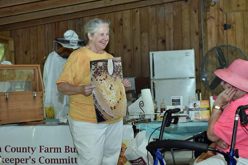Hofwyl-Broadfield Plantation Bee Keeping with Susan Shipley