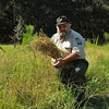 Rice Harvested at Hofwyl-Broadfield Plantation after 90+ Years 09-15-10