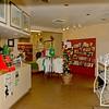Hofwyl-Broadfield Plantation Visitors Center 03-05-11