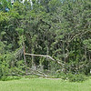 Hofwyl Damage after Hurricane Hermine 09-03-16