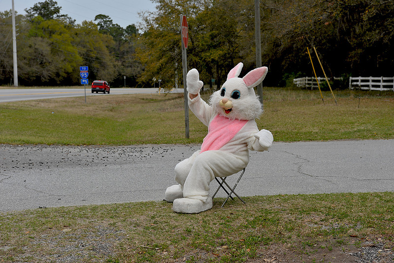 Hofwyl-Broadfield Plantation Easter 04-03-10 - First Easter Egg Hunt -  A Huge Success