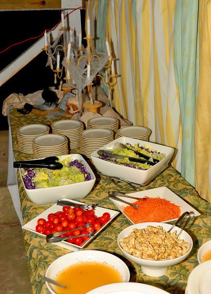 Hofwyl Poe Tales and Rice Oct 24, 2009 Fundraiser at Hofwyl-Broadfield Plantation in Glynn County near Brunswick, Georgia