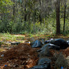 Graveyards along Peters Road in Glynn County, Georgia attributed to the Petersville Community near US17 and State Road 99 - on old Hofwyl Plantation Property - graves begin during the slave days and continues through today - Trash is still being dumped at this site as of 3/10/09