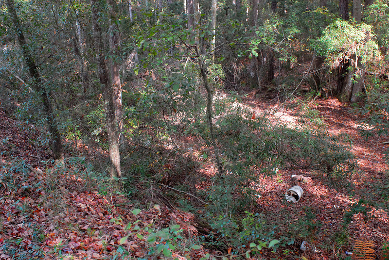 Graveyards along Petersville Road in Glynn County, Georgia attributed to Hofwyl Plantation Slaves and to the Petersville Community near US17 and State Road 99 - on old Hofwyl Plantation Property - graves begin during the slave days and continues through today. Between the graveyard and US17 there appears to be an old canal bed now overgrown, but definitely defined by its old banks.