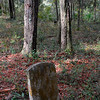 Graveyards along Petersville Road in Glynn County, Georgia attributed to Hofwyl Plantation Slaves and to the Petersville Community near US17 and State Road 99 - on old Hofwyl Plantation Property - graves begin during the slave days and continues through today
