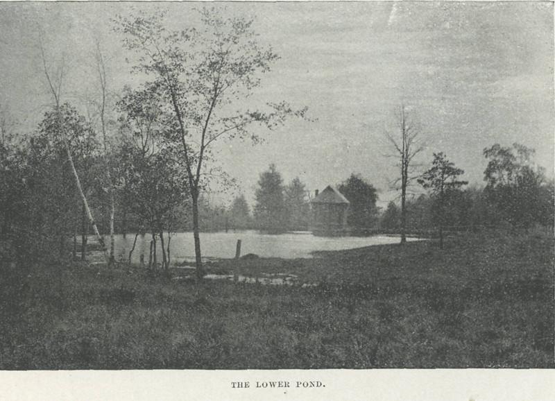 Holyoke The Lower Pond