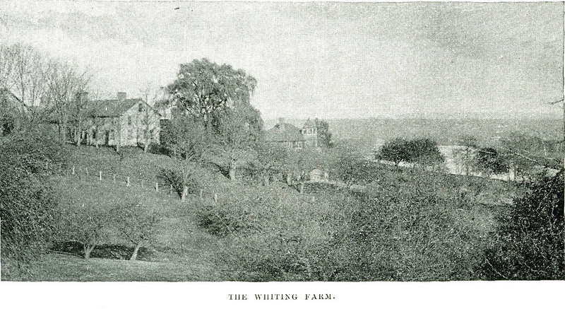 Holyoke Whiting Farm