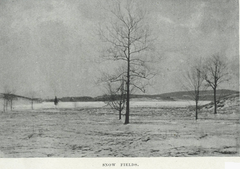 Holyoke Snow Fields