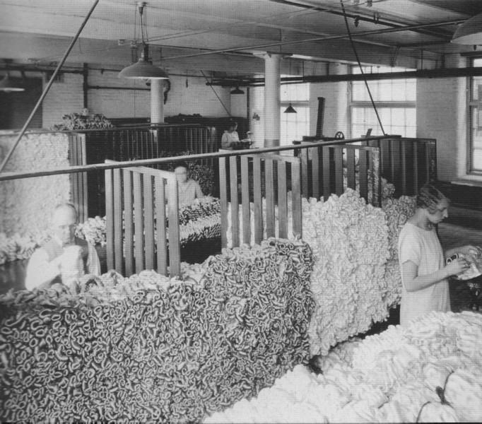 Holyoke Sorting Cocoons