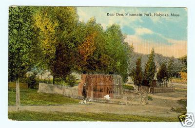 Holyoke Mt Park Bear Den