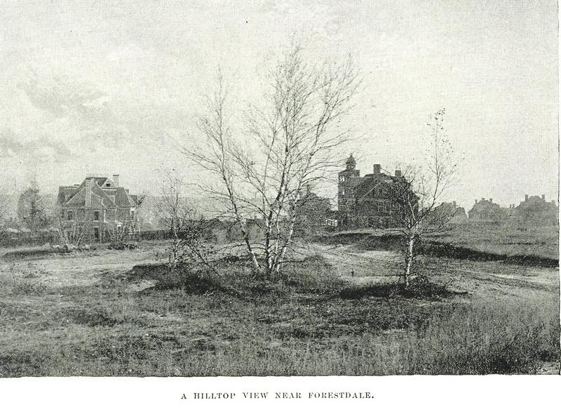 Holyoke  Hilltop near Forestdale