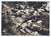 Italians killed in action in the mountains East of Cividale, 1917