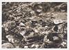 Italians killed on Battlefiled by German Artillery, 1917