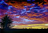 1969-039CD-012-Brasil Rio Grande Sunset P