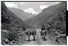 1973-162-016-Peru