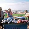 1972-120x6-030-Brasil Fortaleza Fishstand