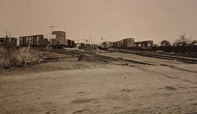 Springfield Yard
