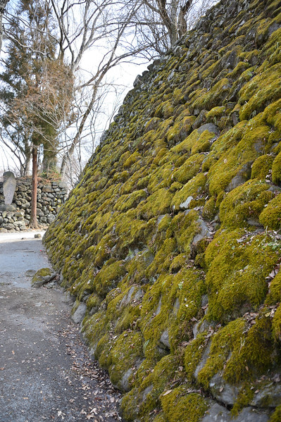 Moss covered rampart