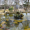 Pond in Kaiko Shrine