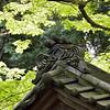 Meigetsuin gargoyle 明月院の鬼瓦