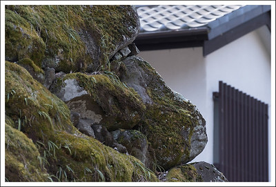 Some of the rock walls have accumulated a lot of moss and vegetation.