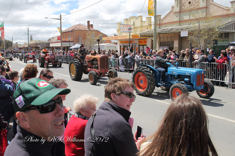 Vintage tractors at the Irish Woolfest Street Parade.