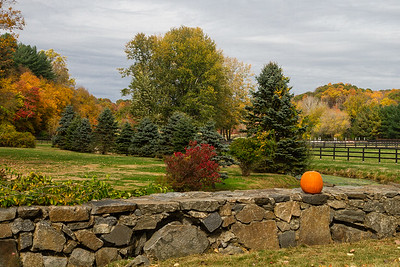 Fall view in Newtown, CT
