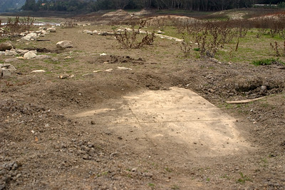 Here, someone had worked hard at clearing an old concrete floor or driveway that had been covered by a foot of silt.