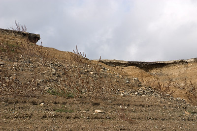 Looking up at the roadbed of the old Highway 17, which used to run down the middle of the valley.