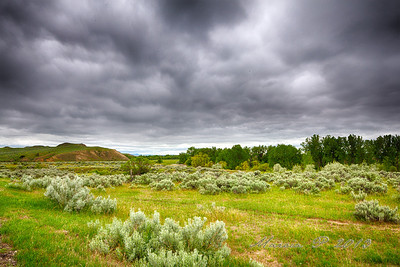 Medicine Tail Coulee. This where Custer and elements of the 7th approached the village initially. Some historians feel he was driven back while others feel that his quarry, namely the women and children had already fled north past this point thus leaving him a nearly abandoned area had he crossed.