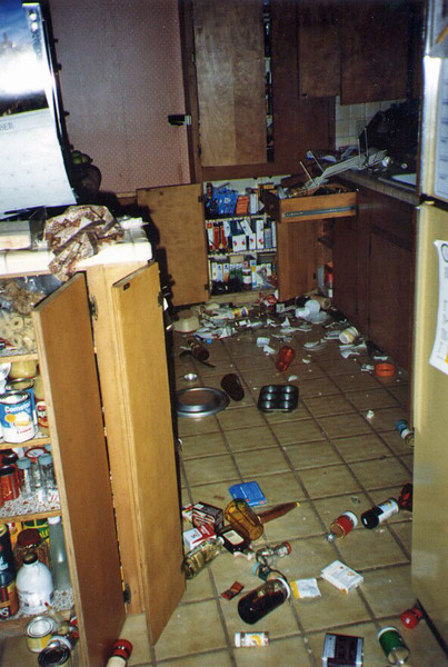 At home, all of our china, most of our glassware, and all kinds of bottles had smashed into a mess on our kitchen counters and floor. I set up a radio and chairs in the driveway and hustled the dogs out of the building, waiting for a couple of hours more until aftershocks had really lessened before wanting to spend time inside.