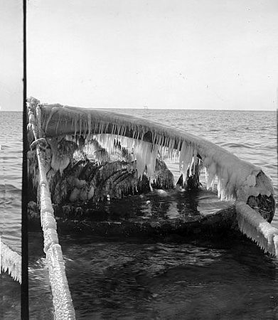 Whaling images and Life Saving Corps