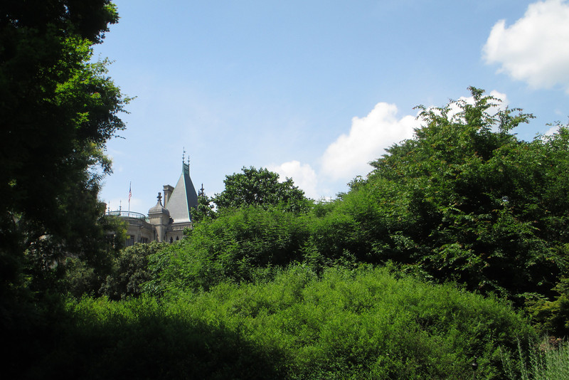 The spires of the Estate peek through the treetops of the Shrub Garden...