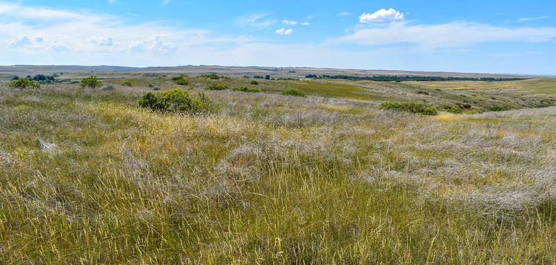 11. Greasy Grass Ridge