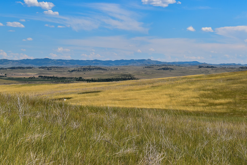 2. Custer's Advance (Crow's Nest)