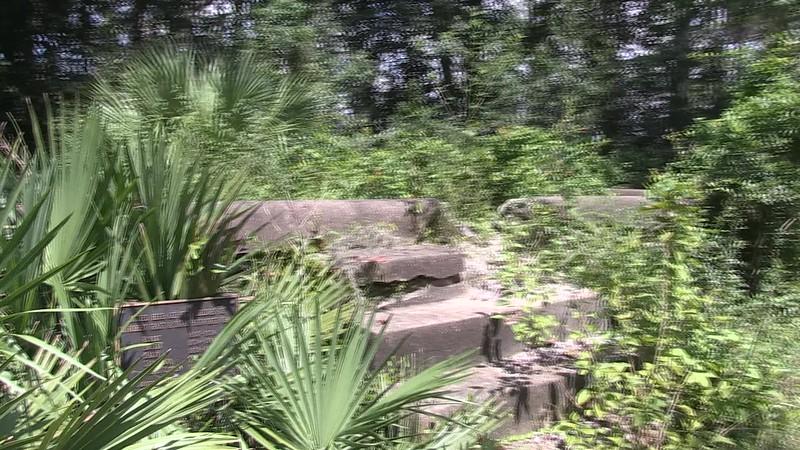 Morninstar Old Cemetery-0301
