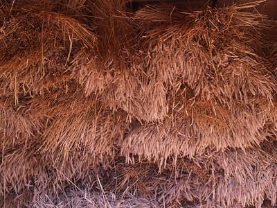 Virginia. Mount Vernon. Wheat.