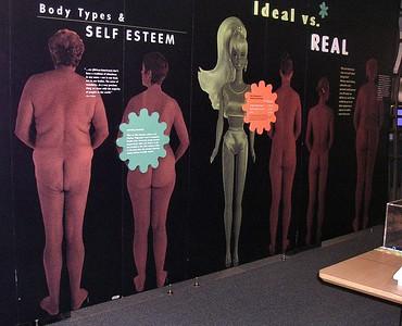 Women's Health, MSC