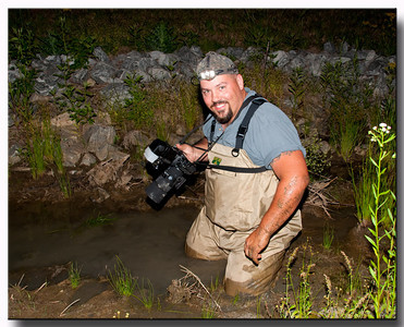 Chasing frog pictures !!!