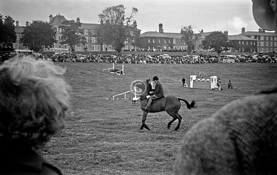 This and the following 8 shots were taken in the Town Park of Letterkenny (I only know this as the buildings in the background are identifiable as St Conal's Hospital) where the annual Show or Fair or whatever was being held.