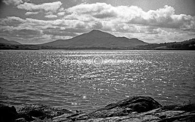 Muckish? Not sure.