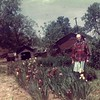 20. Granny Barrett loved her flowers. I think this is a particularly good photo of her with the irises. It's taken in her back yard. The house is off-camera to the right. The red bldg behind her is the Barrett garage, which opened onto E. Thornburg Street. (it's the same bldg as in pictures 22 and 23) The other buildings visible were on the other side of Thornburg.