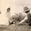 8. Orpha and Earl, Dec 12, 1915. Earl and Orpha married on this date in Parker County, Texas.