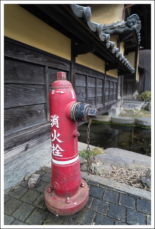 I can't help but notice these lively fire hydrants.  They are different from the ones in Tokyo.
